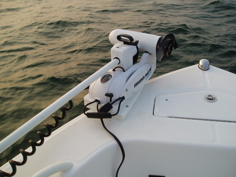 electric trolling motors